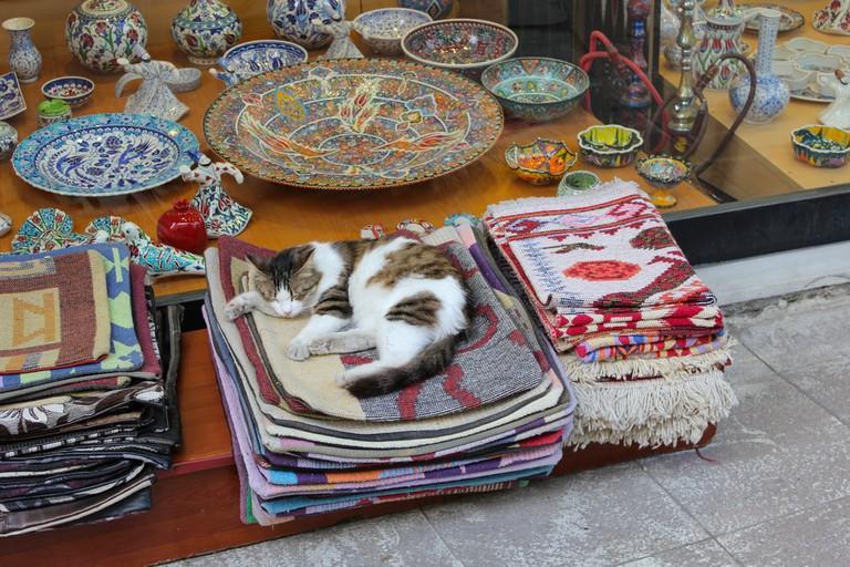 Cat sleeping on traditional Turkish rugs