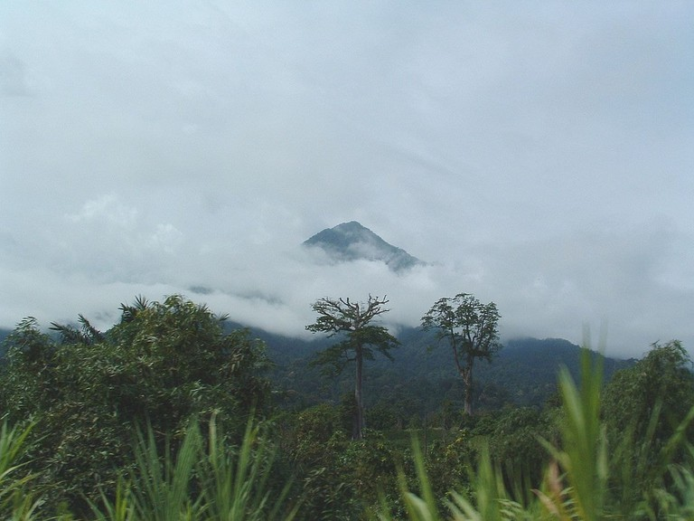 1200px-Mont-Cameroun