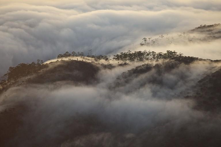 Fog moving slowly over Adam's Peak