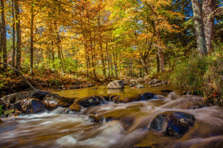 Fall foliage in Gilsum, New Hampshire