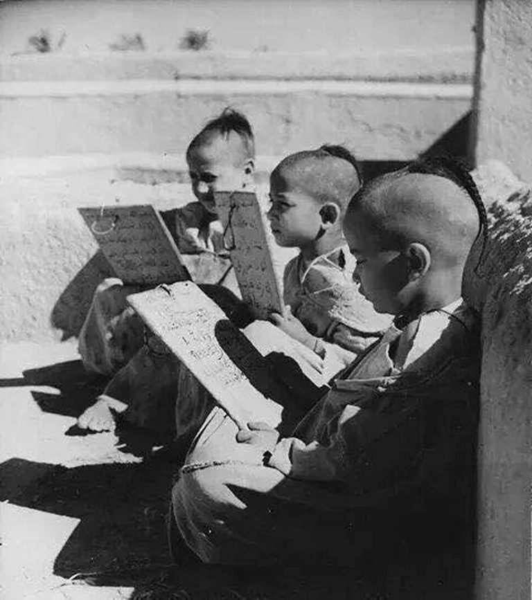 Young boys learning