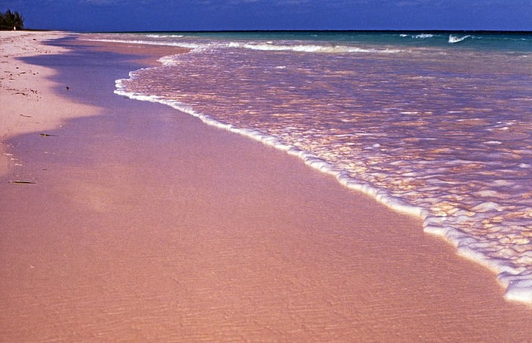 Pink Sand, Harbour Island