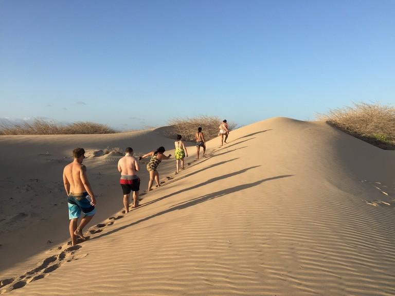 The surreal dunes of Luis Pérez │