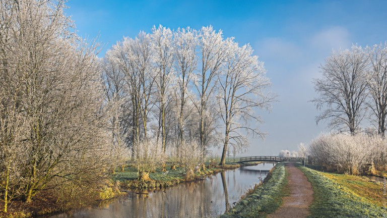 A wintry path outside Gouda