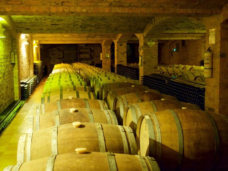Wine barrels at the Ain Karim vineyard