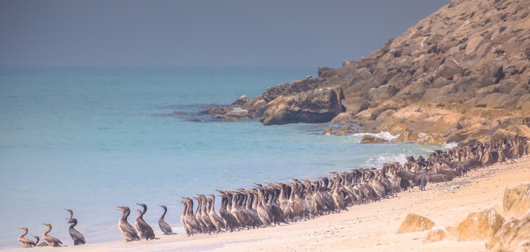 Khasab Beach © Robert Haandrikman