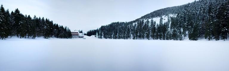 Frozen Mummelsee