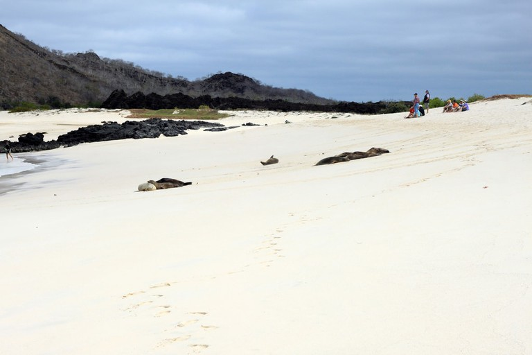 Galapagos with Germans