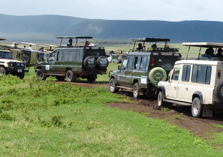 4 × 4 Safari vehicles