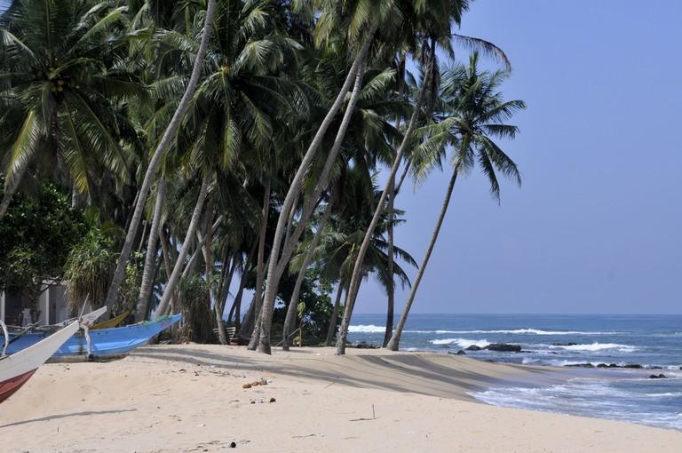 Palm Trees and boats on an idyllic Sri Lankan beach