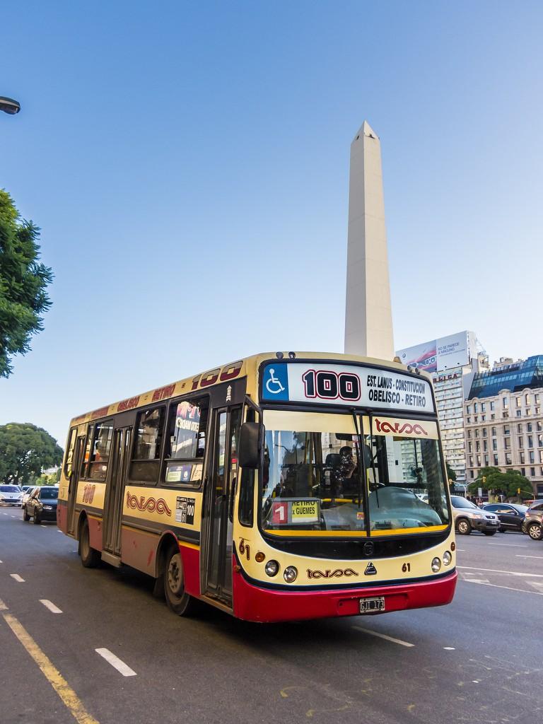 The colectivo, bondi, or bus