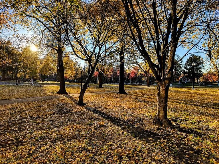 Boston_Common_in_the_fall_03