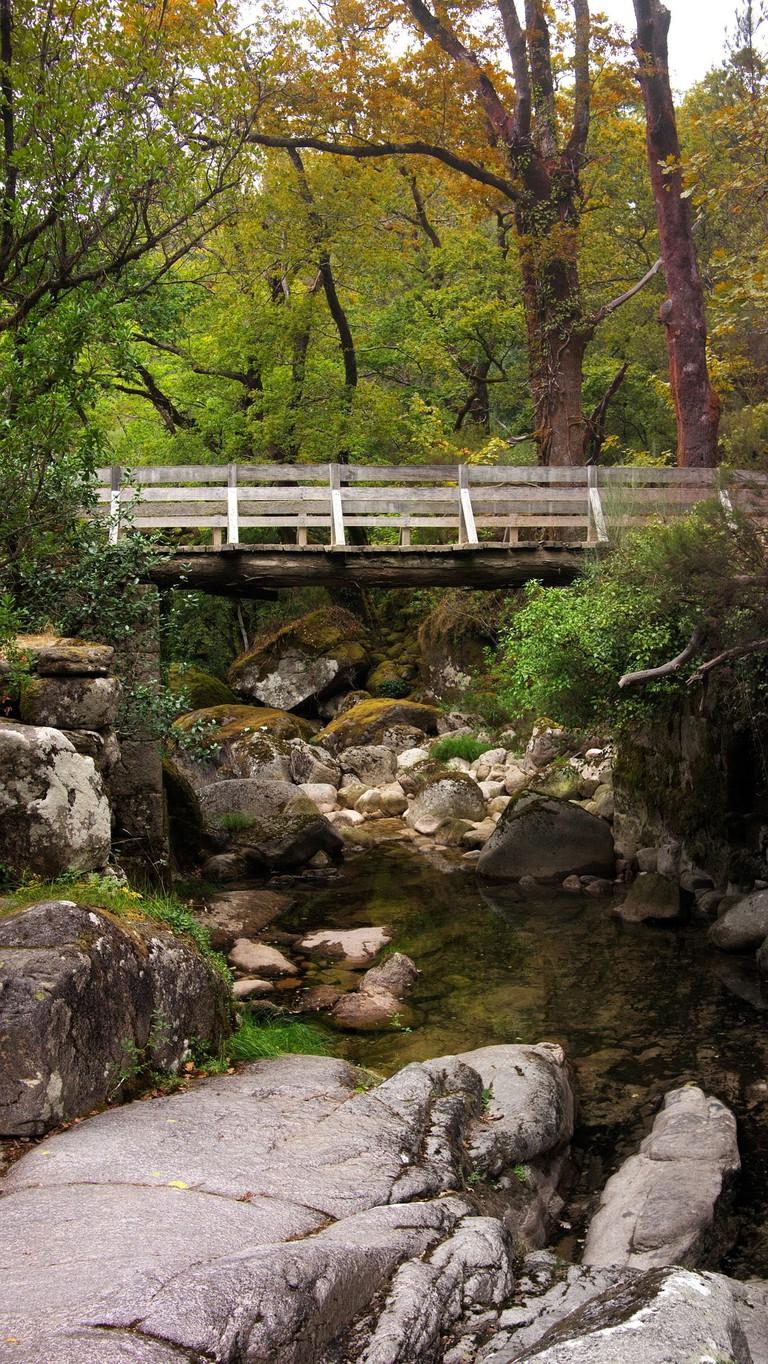 https://pixabay.com/en/bridge-nature-landscape-portugal-1982461/