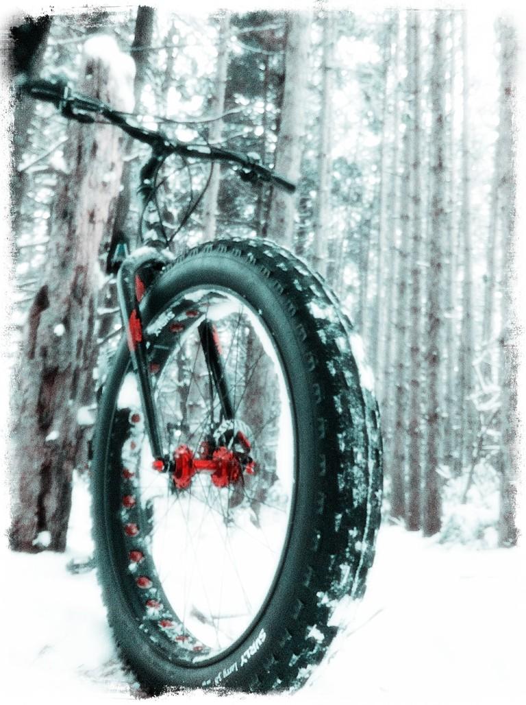 Fat Tire Bike | © Jereme Rauckman / Flickr
