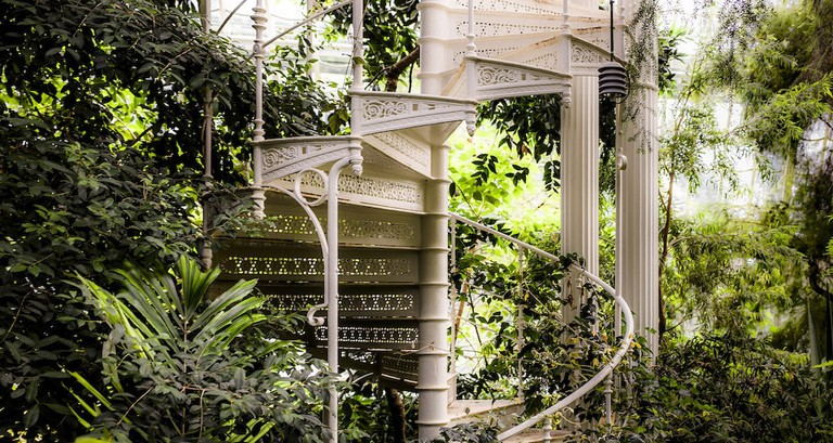 The spiral staircase of the greenhouse
