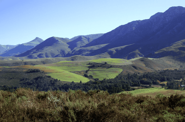 Zonderend Mountains in Greyton