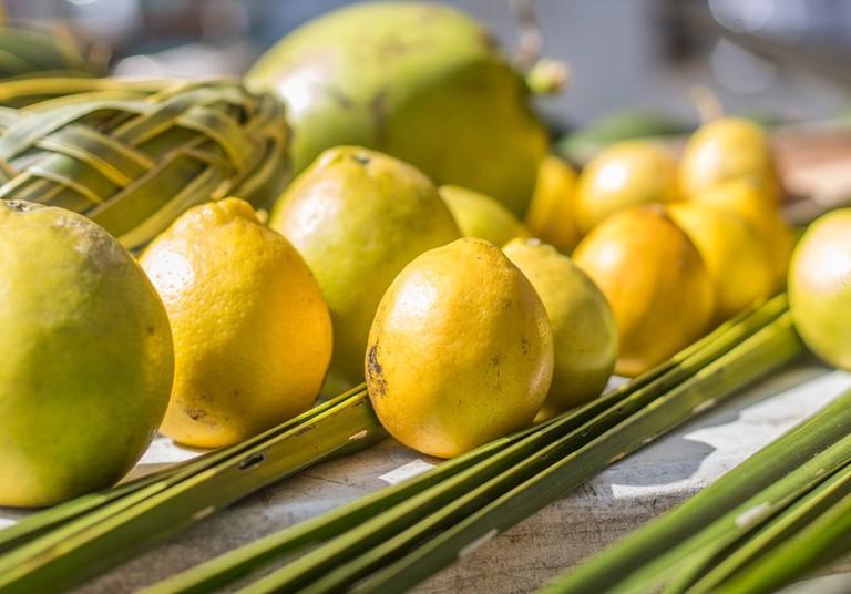 Lemons and leaf-weaving