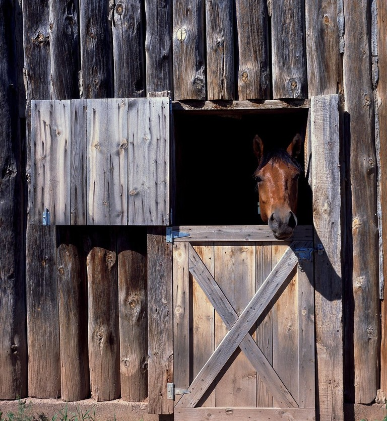 horse-stable-1656802_1920