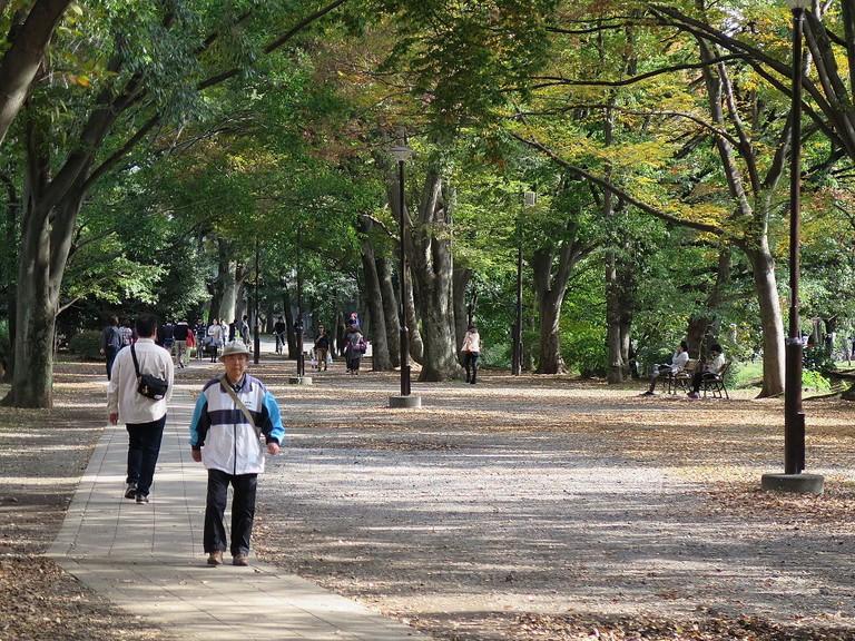 Out for a stroll in Kichijoji's Inokashira Park