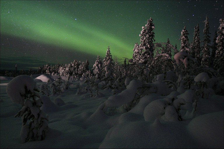 Aurora brealis