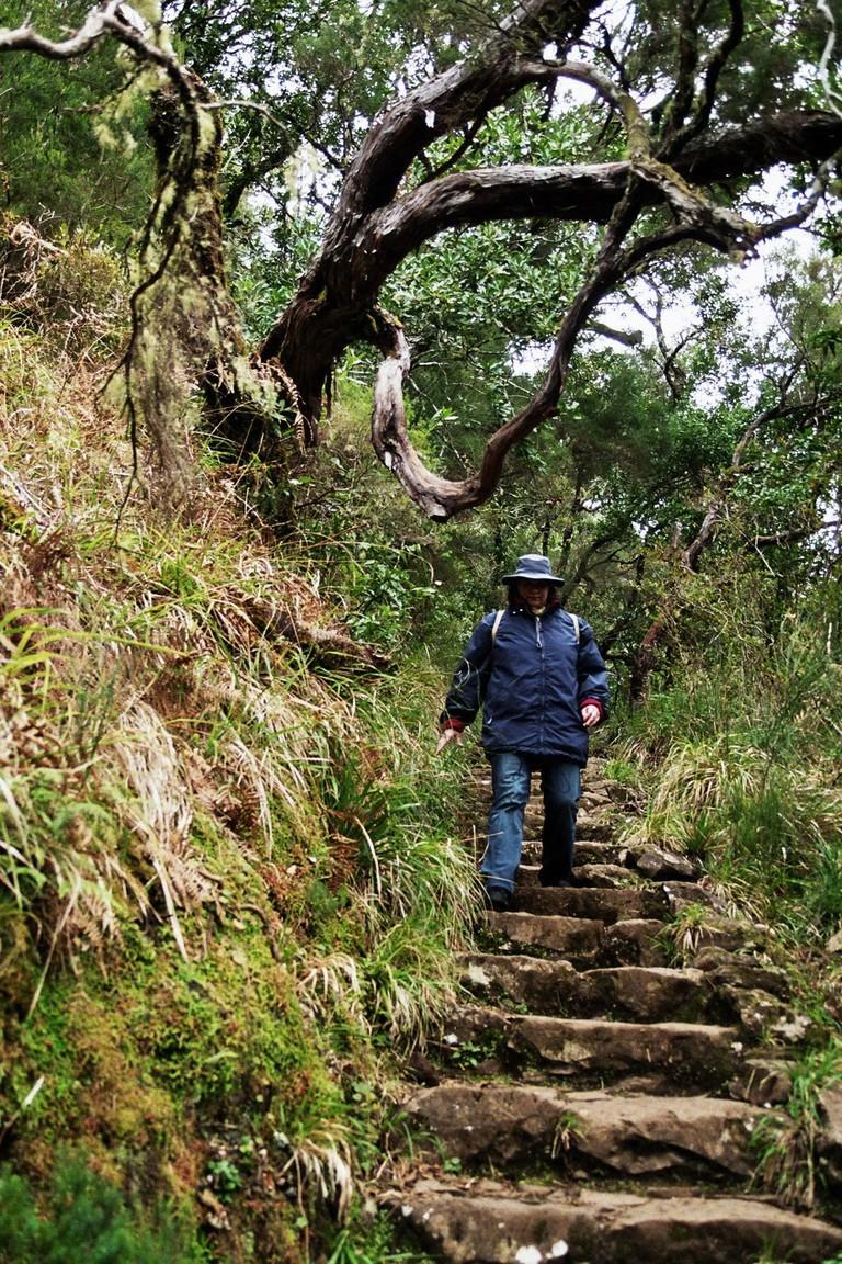 https://pixabay.com/en/madeira-highlands-mountains-summit-103254/