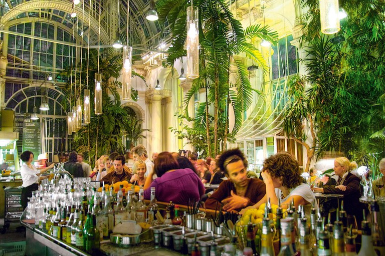 Bar area of the palm house