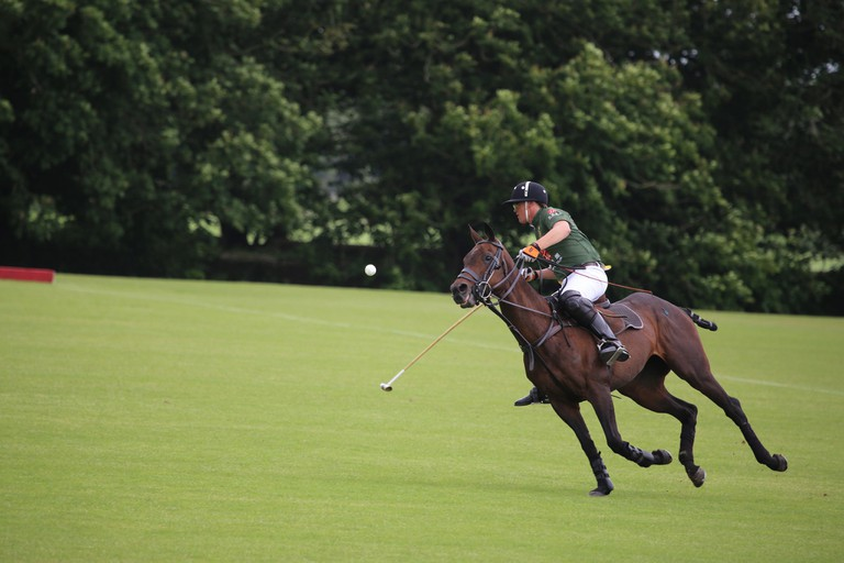 Check out the polo tournaments
