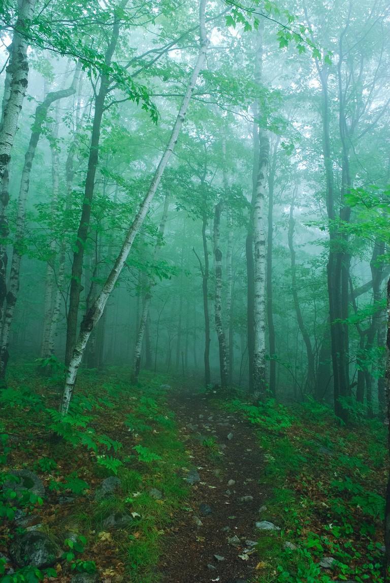 Rib Mountain Trail | © Joshua Mayer / Flickr