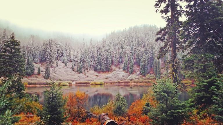 Rogue River-Siskiyou National Forest   © Forest Service / Flickr