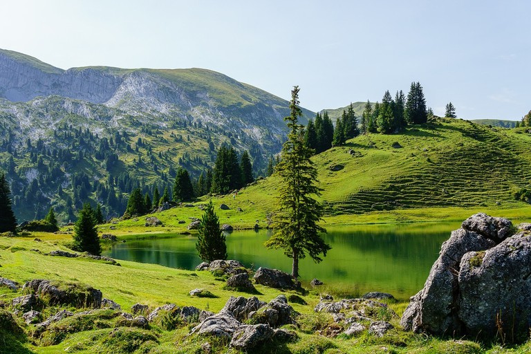 Hiking in Switzerland is a beautiful experience, but you should also keep an eye out for ticks