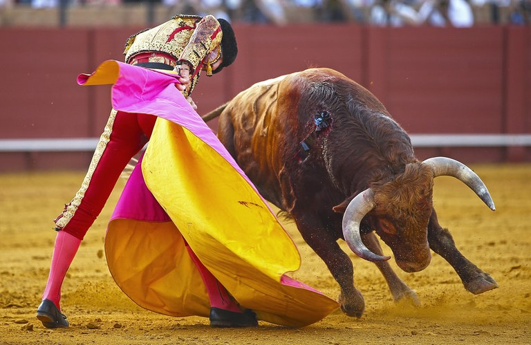 The intense colours of the bullfight are one of its most striking aspects; Por David Pineda Svenske/shutterstock