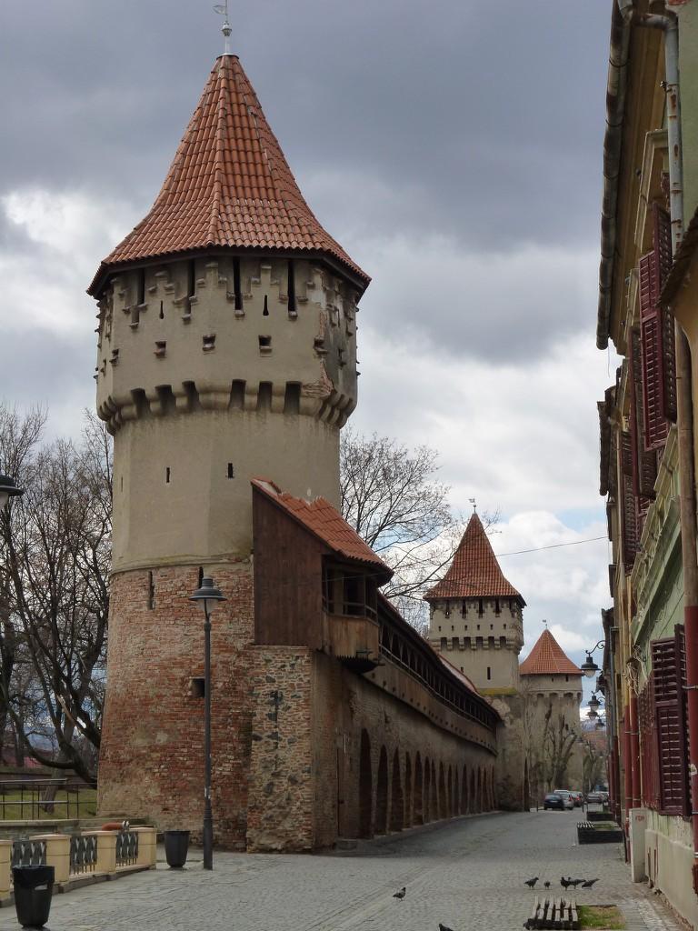 Sibiu's Fortifications