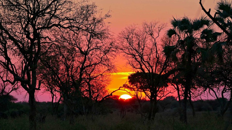 South-African-National-Parks_Mapungubwe
