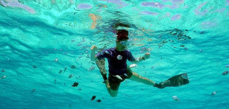stuart-cove-bahamas-snorkel-adventure3