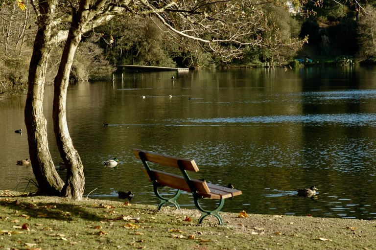 The Lac Mouriscot is a peaceful environment for joggers