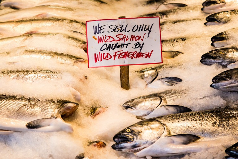 Wild Salmon | © Mobilus In Mobili / Flickr