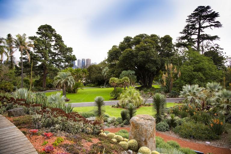 Courtesy of Royal Botanic Gardens Victoria. Photographer: Adrian Vittorio