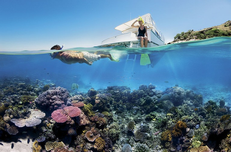 Snorkelling, The Great Barrier Reef