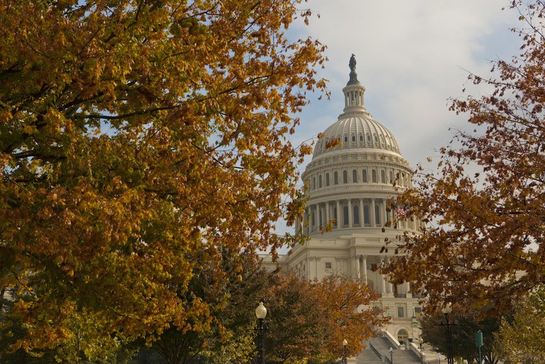 DC in the fall