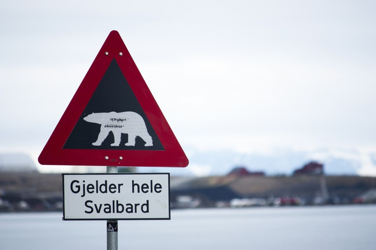 One of Svalbard's polar bear signs
