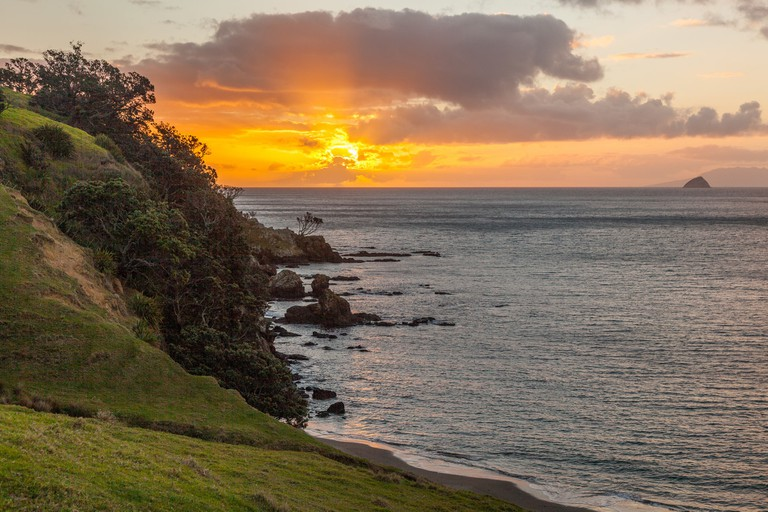 Fletcher Bay, Coromandel Peninsula