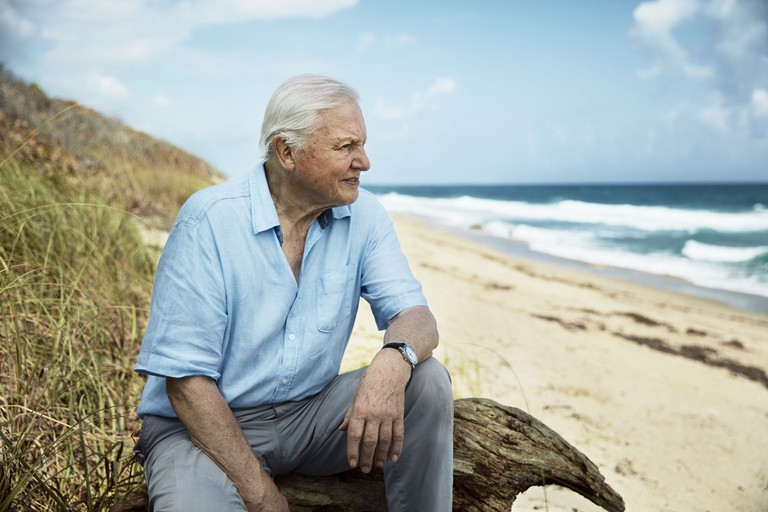Sir David Attenborough in Blue Planet II