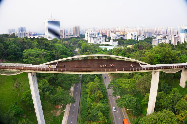 Henderson Waves Bridge in the day