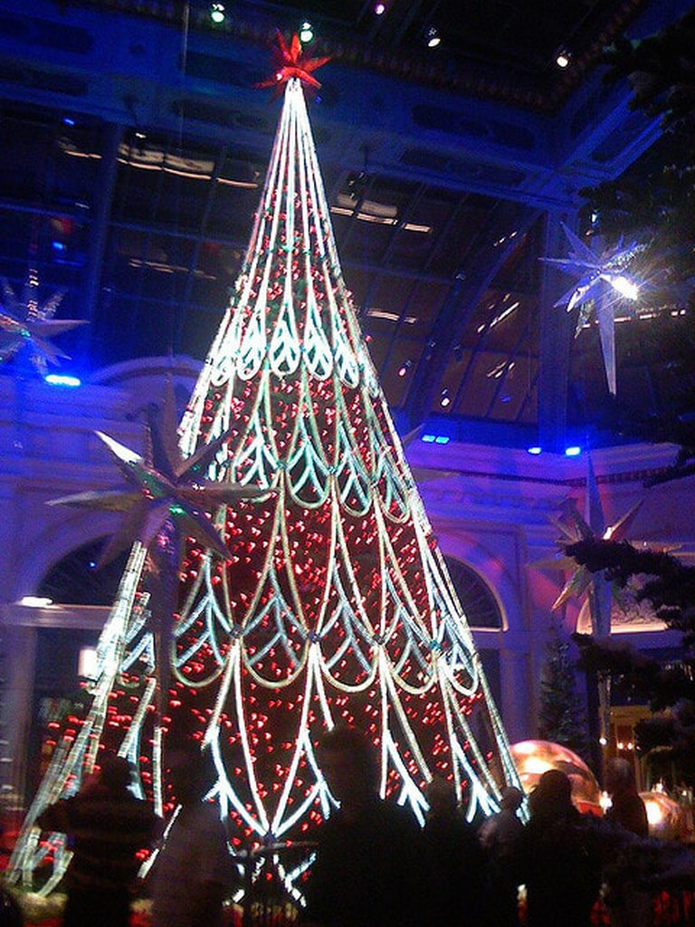 The tree at the Bellagio I