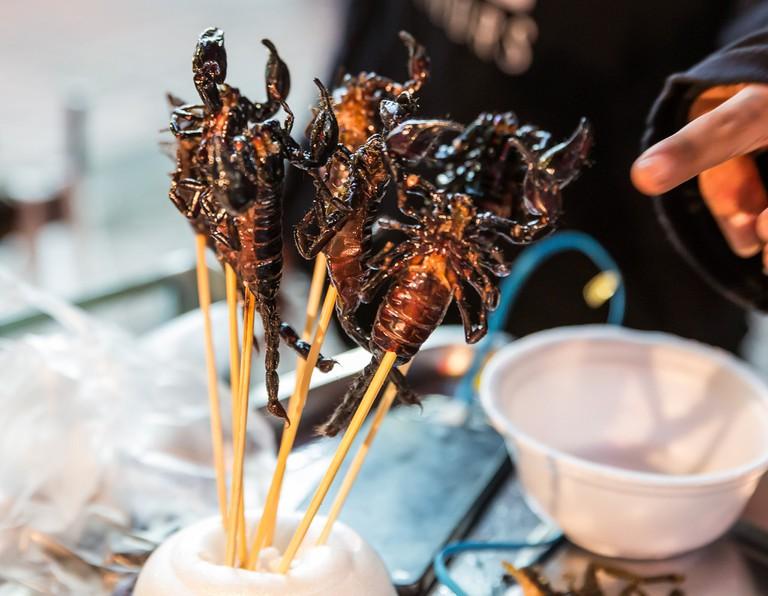 Yummy scorpions