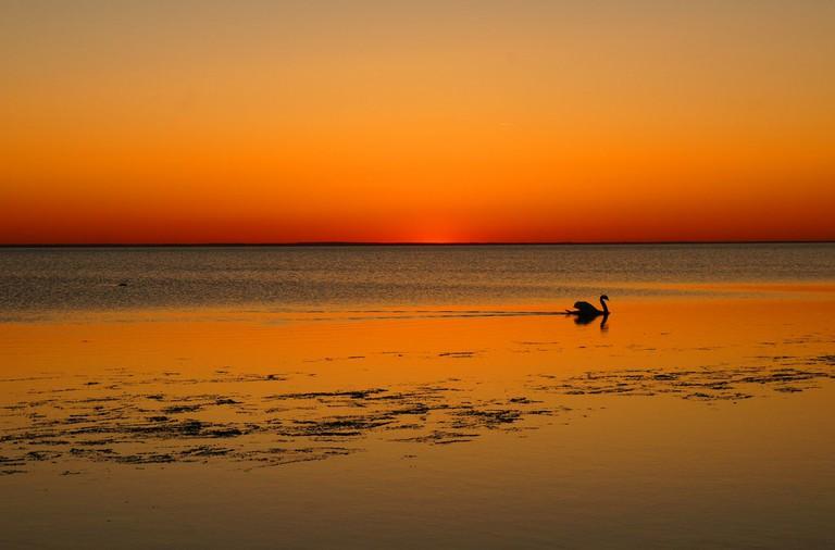 A lovely sunset, Öland