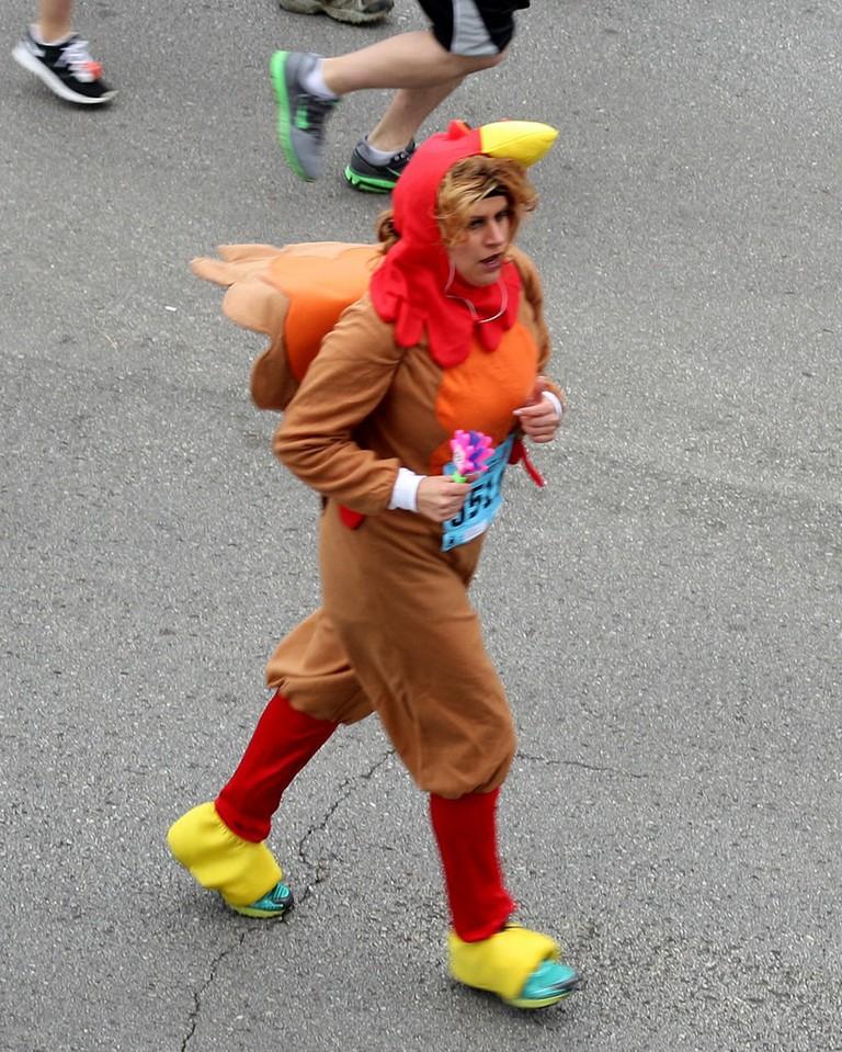 Turkey Trot   © Chris Cast / Flickr