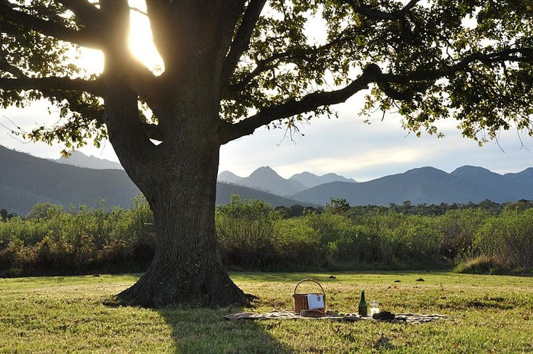 Platbos Nature Reserve