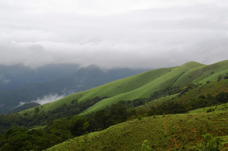 The entire trek is 15 km and the view is breathtaking throughout