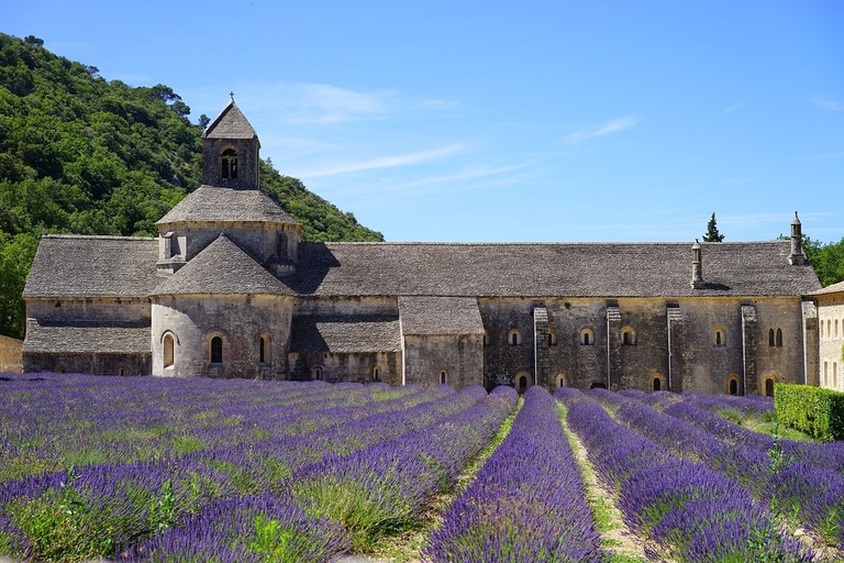 Visit the monks who have taken a vow of silence at Sénanque Abbey